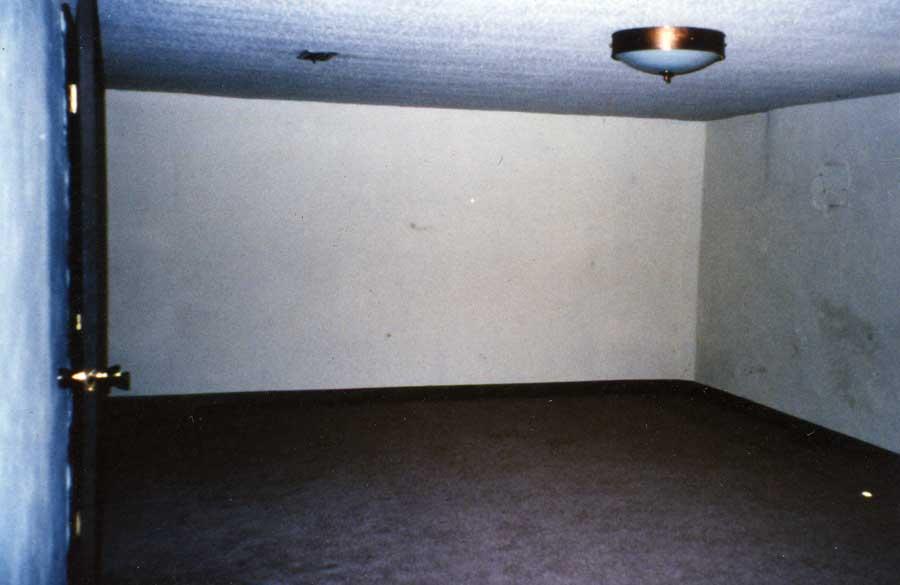 T-basementbigroom.jpg (34034 bytes)