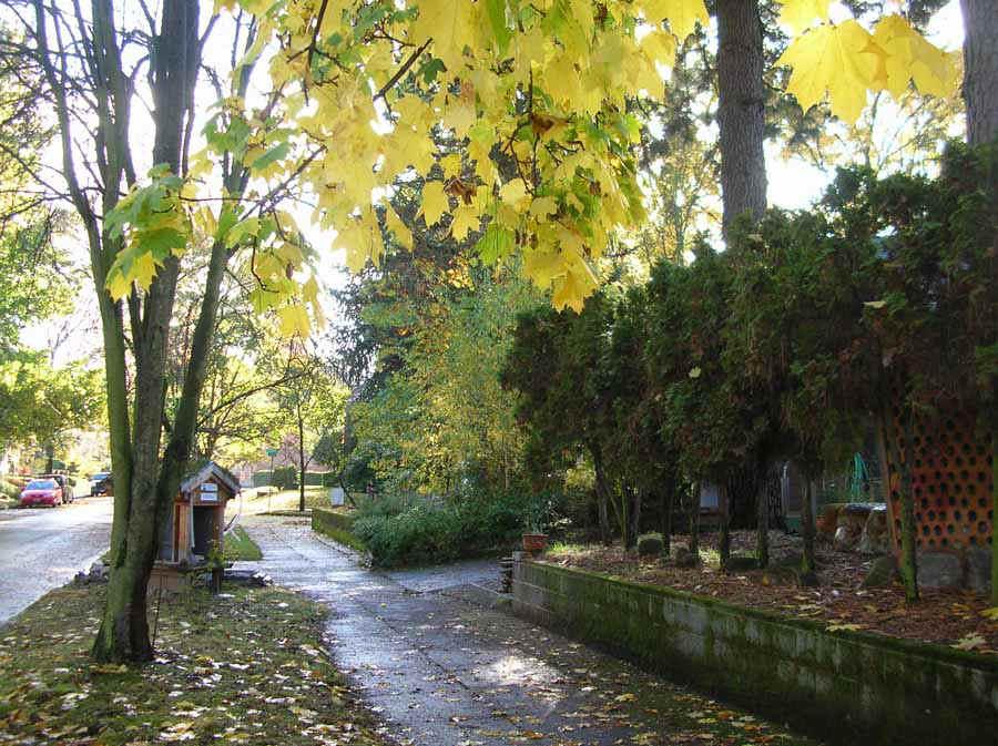 sidewalk.jpg (154447 bytes)